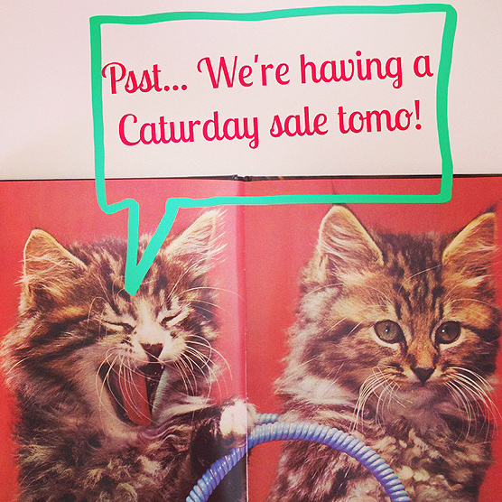Someone's super excited about our Caturday sale tomorrow!